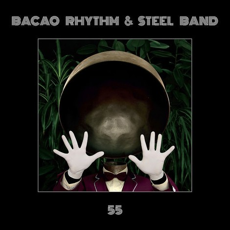 Bacao Rhythm & Steel Band aus Hamburg
