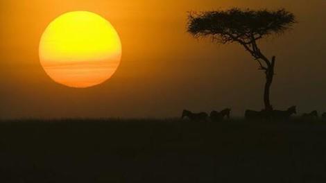So bringt die Koppelung von Solar und Mobilfunk Strom in ländliche Regionen Afrikas
