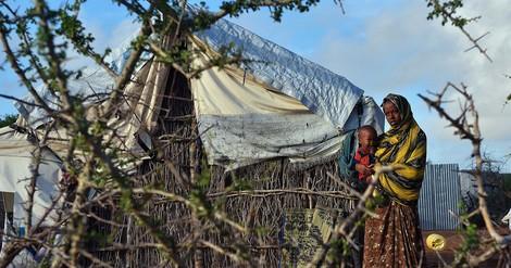 Psychische Belastungen bei Geflüchteten und Vertriebenen
