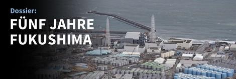 Fünf Jahre nach dem Fukushima-Gau: Zur Lage der Atomkraft