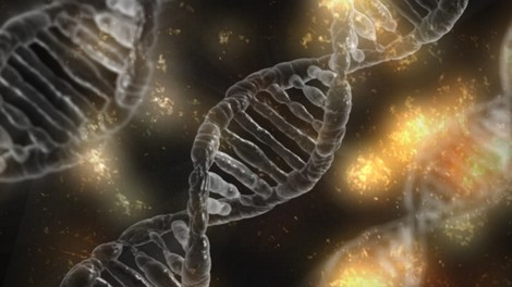 Ein Leben ohne Krankheiten – sollte Genmanipulation von Menschen endlich legal werden?