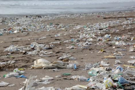 So lässt sich das Plastikproblem in den Griff kriegen