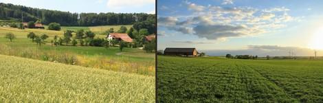 Ernährungssicherheit, Klimawandel, Biodiversität: Wie man verschiedene Aspekte vereinen könnte.