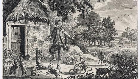 Die Geschichte des wahren Robinson Crusoe