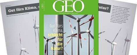 Windkraft und Vögel: Wenn Klima- und Naturschutz im Widerspruch zueinander sind