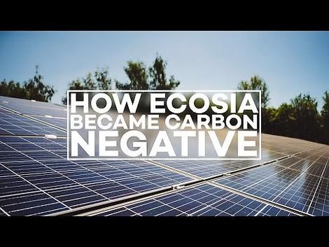 CO2-negative Suchanfragen: mit Ecosia statt Google