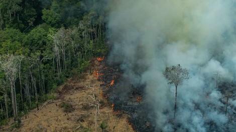 Nicht nur das Ende für Brasilien. Was ein brennender Amazonas für die Welt bedeutet.