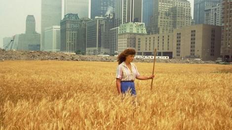 Ein Weizenfeld als Kunstwerk: Agnes Denes