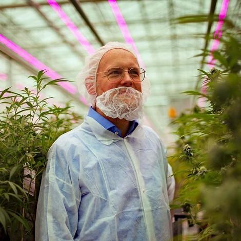 Medizinisches Cannabis: Was bei der Legalisierung falsch läuft