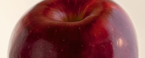 Fast alles über Äpfel und mein Möhrenrohkost-Rezept