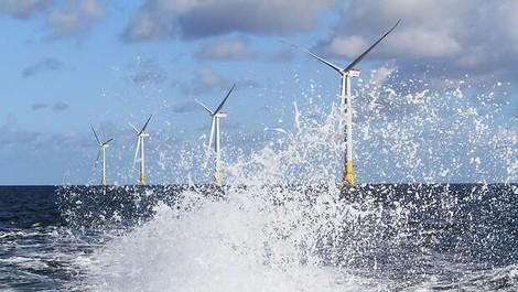 Grün und günstig, weil digital: Neue Stromversorger drängen auf den Markt