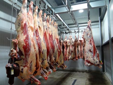 Gestern & Heute: Was sich in der Fleischindustrie zeigt, sind keine Missstände, sondern das System
