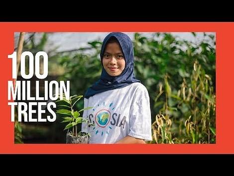 Ecosians did it: 100 Millionen Bäume sind gepflanzt.