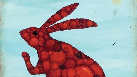 Die USA bereiten sich auf eine Epidemie vor – sie trifft Kaninchen