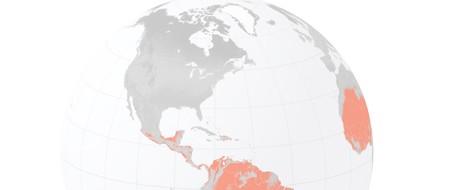 Klimawandel und Migration: NYTimes lässt sich Szenarien modellieren und setzt so (wieder) Maßstäbe