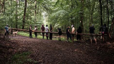 Früher Gorleben, heute Dannenröder Forst