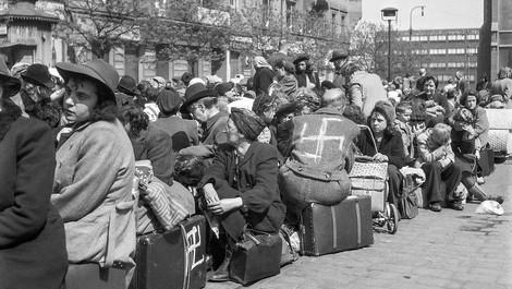 Die Vertreibung der Deutschen aus dem Sudetenland