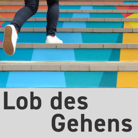 """Über das Nachtwandern: Zu Gast im Podcast """"Lob des Gehens"""""""